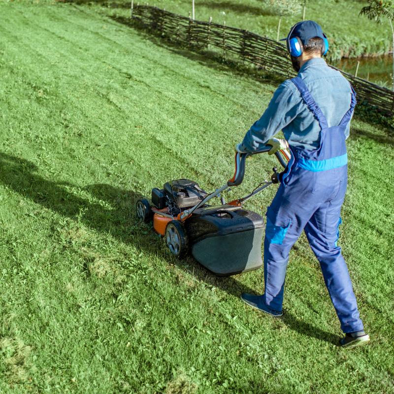maintenance de locaux et espaces verts